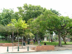 Park in Noumea, New Caledonia